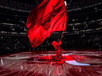 boGO BULLS! A special offer from the Chicago Bulls…