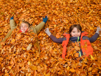 What's Happening in November: Just for Kids!