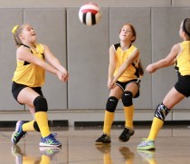Fall 2018 Youth Sports Leagues