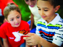 How the Y Promotes Environmental Friendliness in Children
