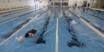 Missing out on Swim Lessons as Kids, These Adults Are Diving In