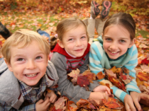 Fall activities you don't want to miss at the Y!
