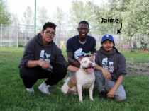 YMCA Youth Jaime Garcia Trains a Court Case Dog